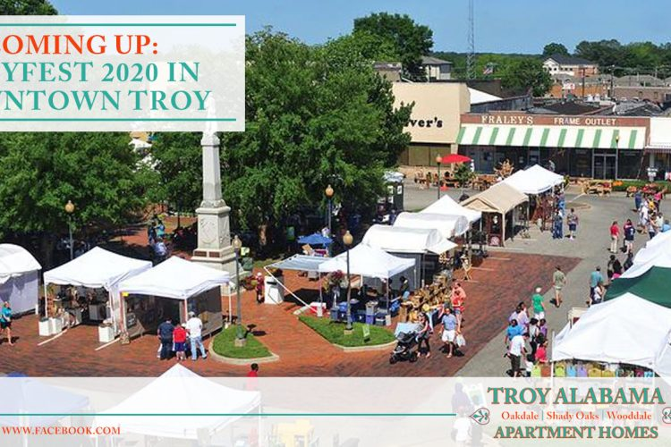 Coming Up: TroyFest 2020 in Downtown Troy