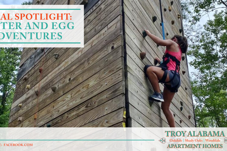 Local Spotlight: Butter and Egg Adventures